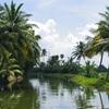 【南インド旅③】知らない町に着いたらまず寄ろう観光案内所。旅の最大の目的、ハウスボードへ!がしかし不測の事態。