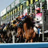 【小倉記念 2019 予想】過去のレース傾向分析&各馬評価まとめ /  前残り馬場の少頭立てハンデG3  狙うはディープでも、ルーラーでもなく・・・