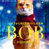 【速報】年末号表紙ストリートキャット・ボブ&「名前を呼んで」Blue Vintage / Bob the Street Cat & Blue Vintage