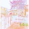 11月の庭[アート]