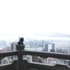 香港旅行④~旅先あるある:そんな興味ないけど折角だからって~