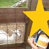 夏休み北海道家族旅行記【札幌編】 『むらかみ牧場』がおすすめ!