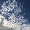 【一日一枚写真】空の波打ち際【スマホ】