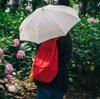 空梅雨でもやっぱりアジサイ、大阪の長居植物園へ行った