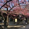 今朝行った荏原神社