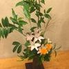 お店の花:百合とマリーゴールド、ササキ