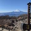 箱根外輪山の山歩きと金時山