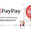 これは凄い!!PAY PAYアプリダウンロードだけで500円!最大5000円チャージで7000円分がもえらます♪