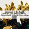 ガンプラ HGUC ユニコーンガンダム2号機 バンシィ・ノルン(デストロイモード)グリーンフレーム チタニウムフィニッシュVer. 組立編