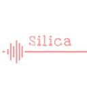 Silica's activity record