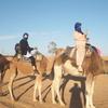【モロッコ女子旅】砂漠ツアーの持ち物リスト全17点