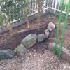 ポカポカの陽気の中、和室前の庭をいじりました。