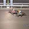 第50回戸塚記念予想、東京ダービー2着馬ギャルダル川崎競馬場11R