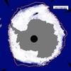 南極の海氷減少