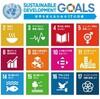 「持続可能な開発目標(SDGs)学生フォトコンテスト2018」受賞者へのインターン・インタビュー[第1回]