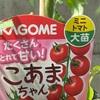 ミニトマトの苗を購入!