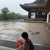 雨の三十三間堂