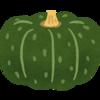 【プランター栽培】カボチャの成長記録!家庭菜園のススメ。