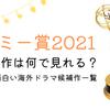 エミー賞2021のドラマは何で見れる?|絶対面白い海外ドラマ候補作一覧