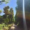 【国内旅ラン】東京編:皇居〜レインボーブリッジ〜お台場〜月島