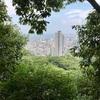 【神戸/hiking】評価⤴️の余地を感じさせる滝山城跡〜夏の山歩き