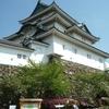 ぼたん咲く和歌山城