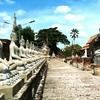 タイ2日目、アユタヤで象に乗る の巻!