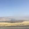 湿原が霧に包まれる季節に