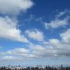 知らなかった感動を知ったin藻岩山  札幌でお散歩してみた その①