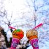 サーティワンアイスと桜