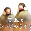 文鳥とシンプルライフ