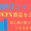 BTCFX、GMOコインの利益!!初心者でも出来る!!初心者が勝てるようになるまで~