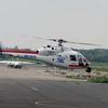2017年8月21日(月)調布飛行場 JA6603 東北放送