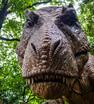 公園に潜む恐竜たちに大接近⁉新恐竜も登場して大人気の『ディノアドベンチャー名古屋』