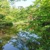 光琳と乾山を鑑賞しに根津美術館に行ってみた。庭園が最高でした。(港区南青山)