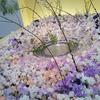 子どもと生け花鑑賞!大阪高島屋の池坊展&なんばパークスの芝生広場