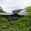 京都市東山区 東福寺