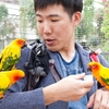 【パノラマ台ハイキング・富士花鳥園】フクロウ・鳥と触れ合い体験・鹿肉グルメ