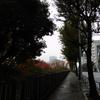 #025 雨上がりの外堀通り(2016.11.19)