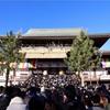 成田山新勝寺に初詣