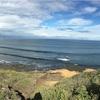 オーストラリア最南端、ベルズビーチへ!
