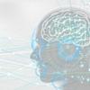 AI関連で聞く用語解説(AI、強いAI・弱いAI、全脳アーキテクチャとは)