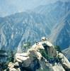 中国で行くべきスポット10選 (10 worth place to visit in China)