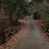 山城町森林公園から井手町へ抜ける山道