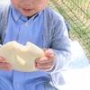 赤ちゃんがはちみつパンを食べた!? これって、大丈夫?