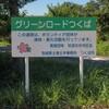 つくばりんりんロード桜並木発祥の地~つくば市とその周辺の風景写真案内(540)