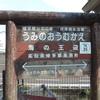 シリーズ土佐の駅(151)海の王迎駅(土佐くろしお鉄道中村線)