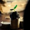 【経済を学ぶ】累進的配当政策を公言する国内株式銘柄まとめ【夢の配当生活】