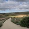 スペイン巡礼:【Day 18】Castrojeriz → Boadilla del Camino (20.2km)