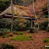 京都紅葉狩りの旅 5